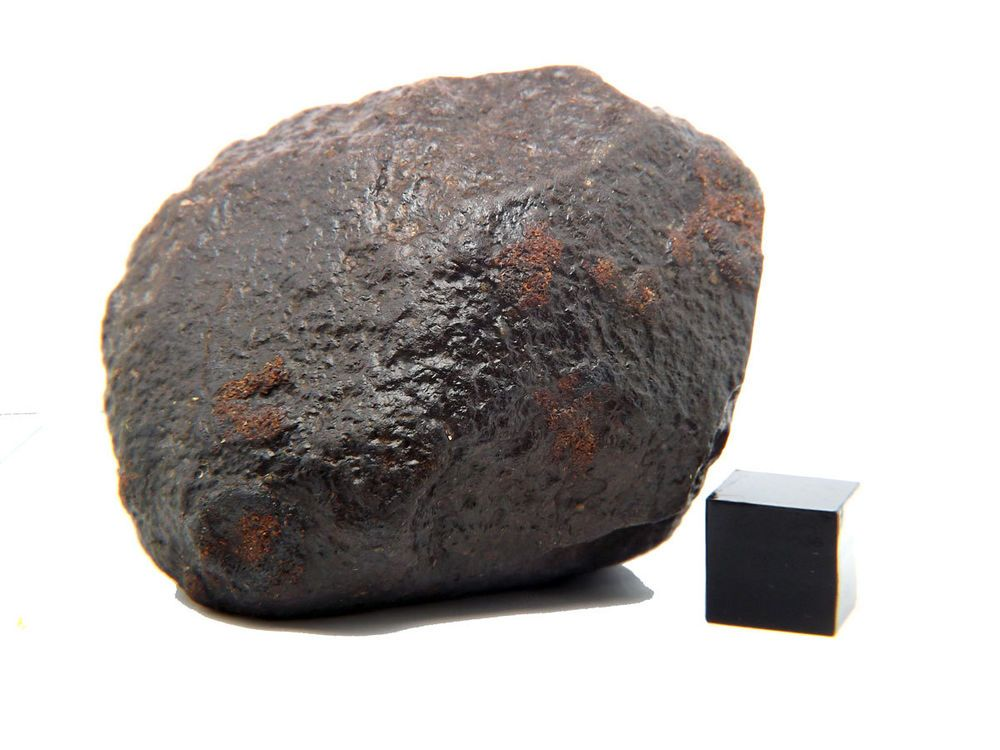 Amazing Unclassified Chondrite Meteorite Nwa X 141 0g Windowed Meteorite Windows Nwa