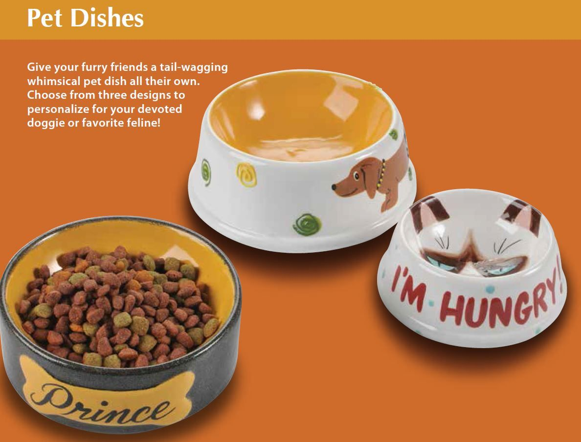 Ceramic Painting Supplies - Paint your own pottery pet bowl personalised or customised diy craft painting