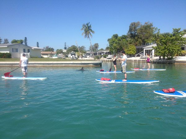 Learn How To Paddle Board At The Stump P Beach State Park In