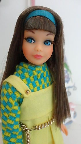 Vintage TNT Twist N Turn Brunette Skipper Barbie Stunning | eBay