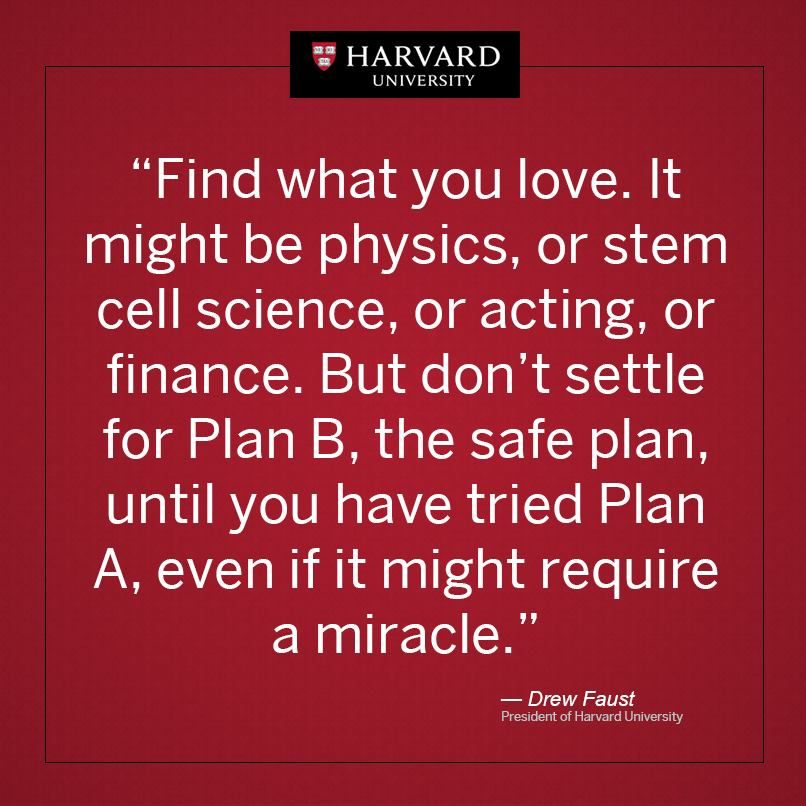 Inspirational Quote From The President Of Harvard