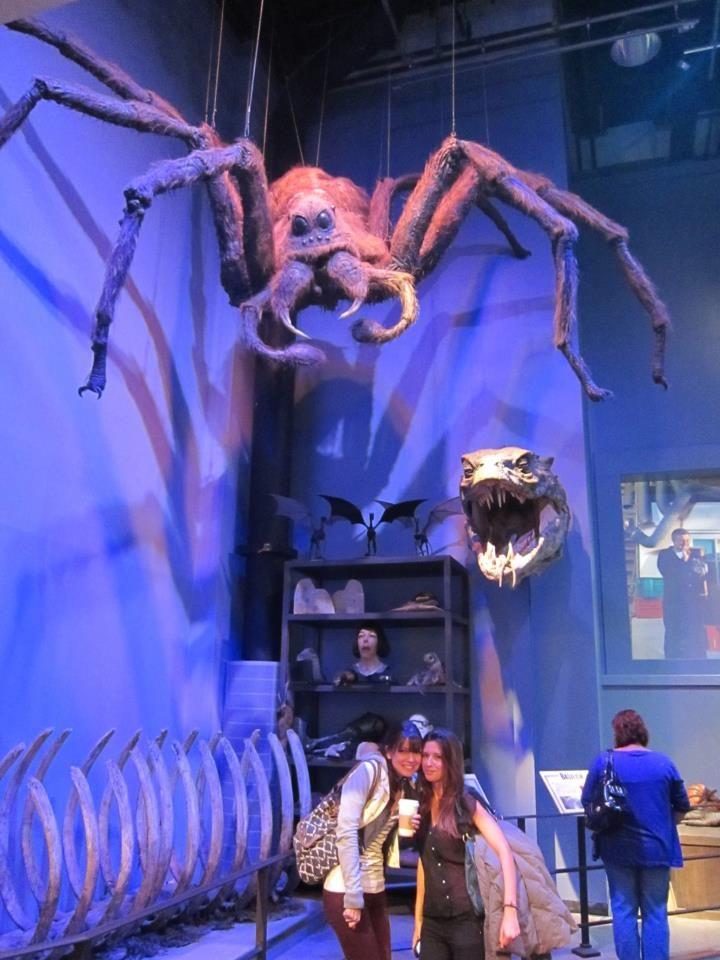 Aragog Harry Potter Creatures Harry Potter Theme Halloween Outdoor Decorations