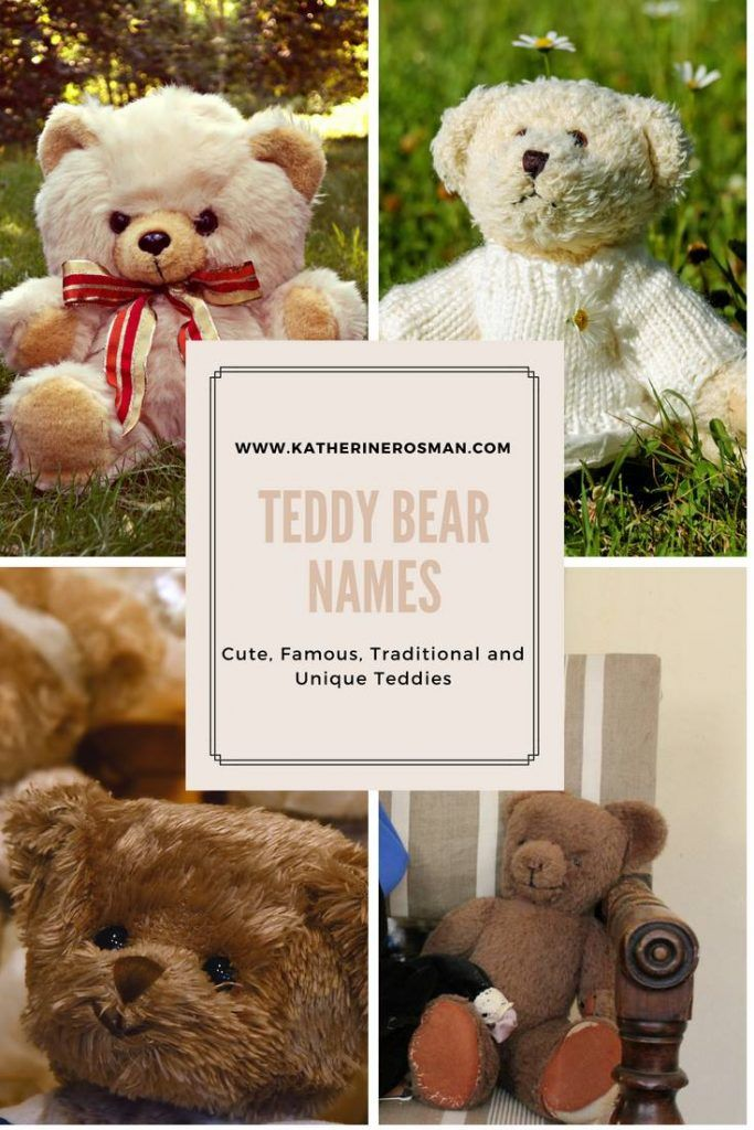 85 Teddy Bear Names Cute, Famous, Traditional and Unique