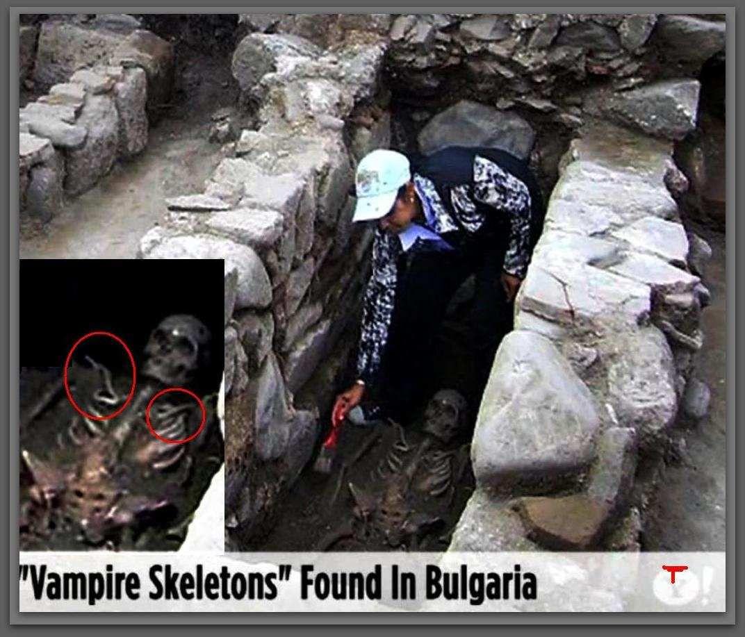 Vampire Skeleton Real Vampire Skeleton Found Vampire