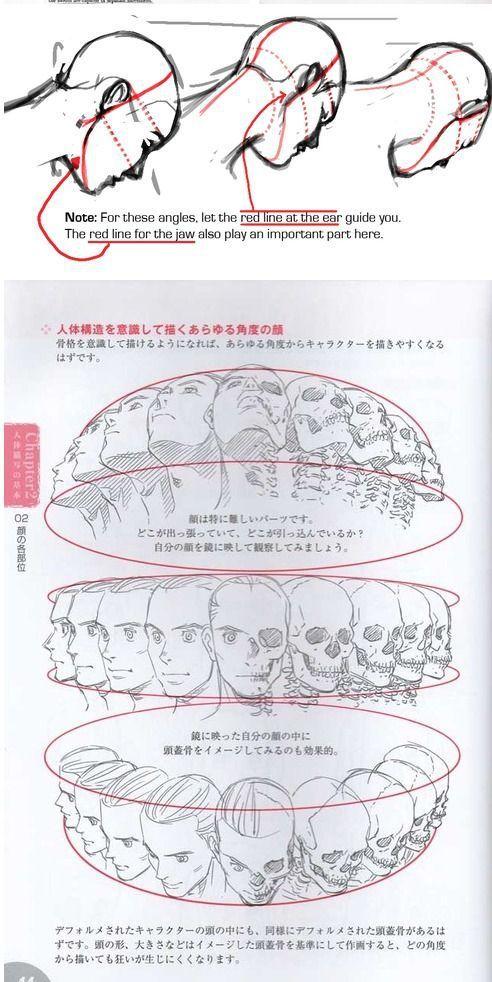 Referencias gráficas para dibujar un rostro desde diferentes ángulos.