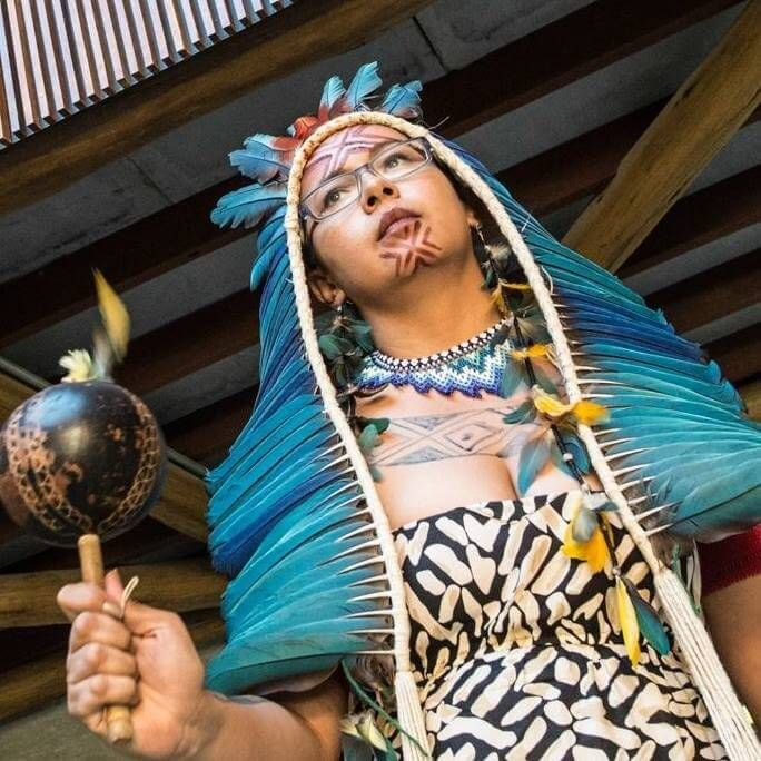 Indigenous Brazilian Broadcasts Urgent Plea for Help<span>: <span> 'We are Facing a Violent Genocide'</span></span>