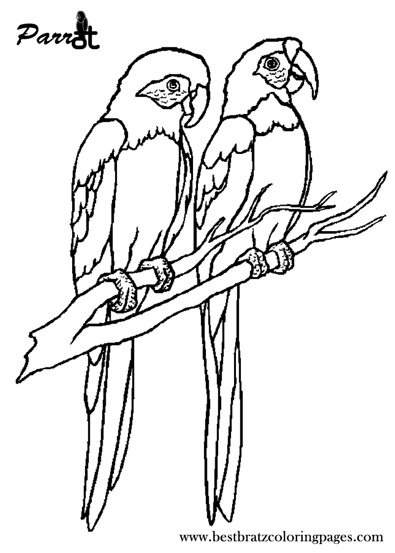 Free Printable Parrot Coloring Pages For Kids | jeux | Pinterest ...