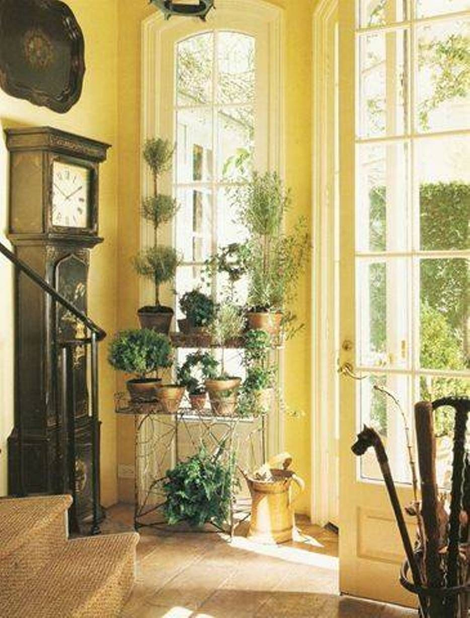 Fresh yellow entryway design with standing clock and plantation ...
