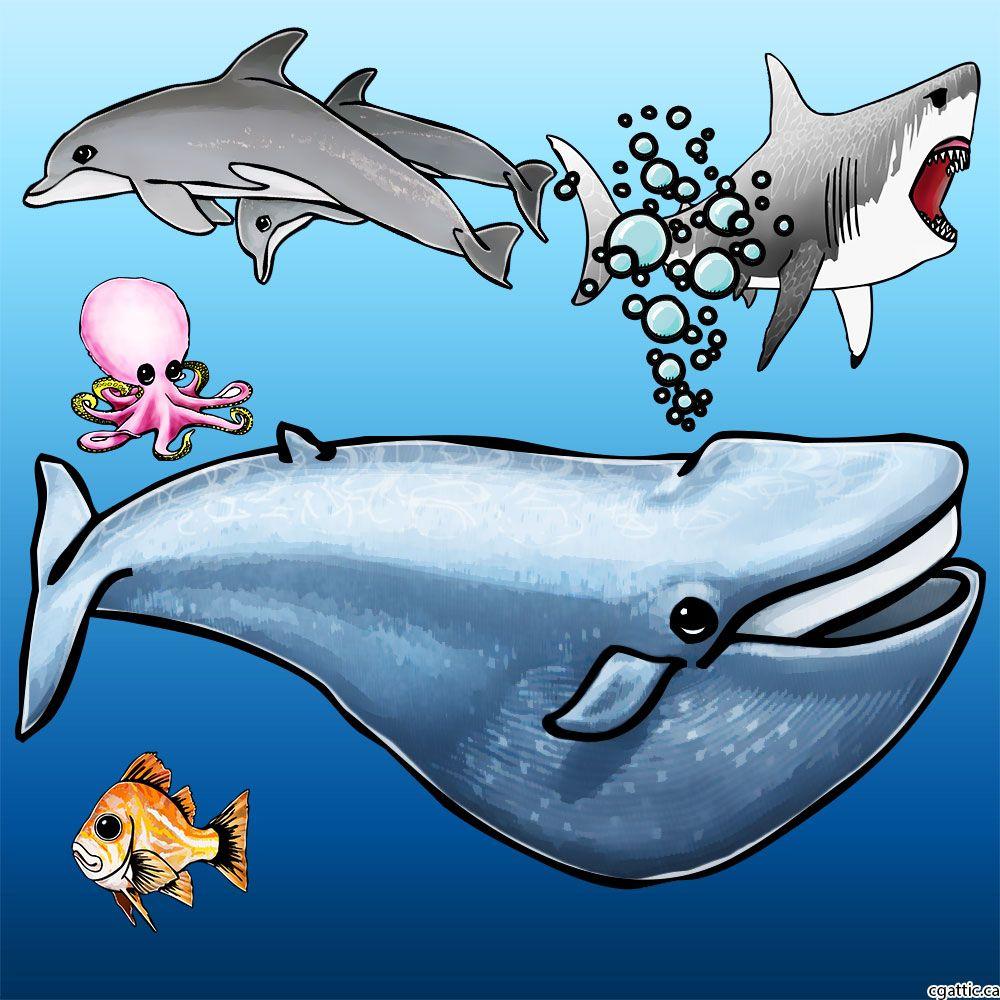 Drawing Cartoon Sea Creatures in Cartoon sea