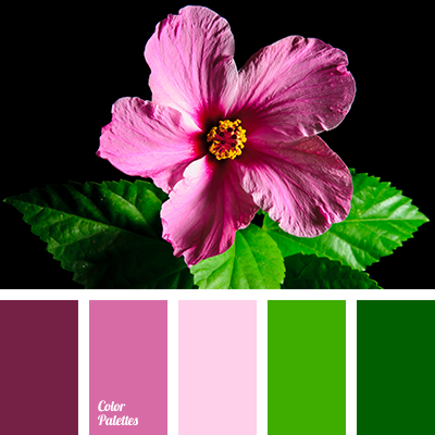 best color palettes | pink and green | color inspiration for design | colour trends | design seeds