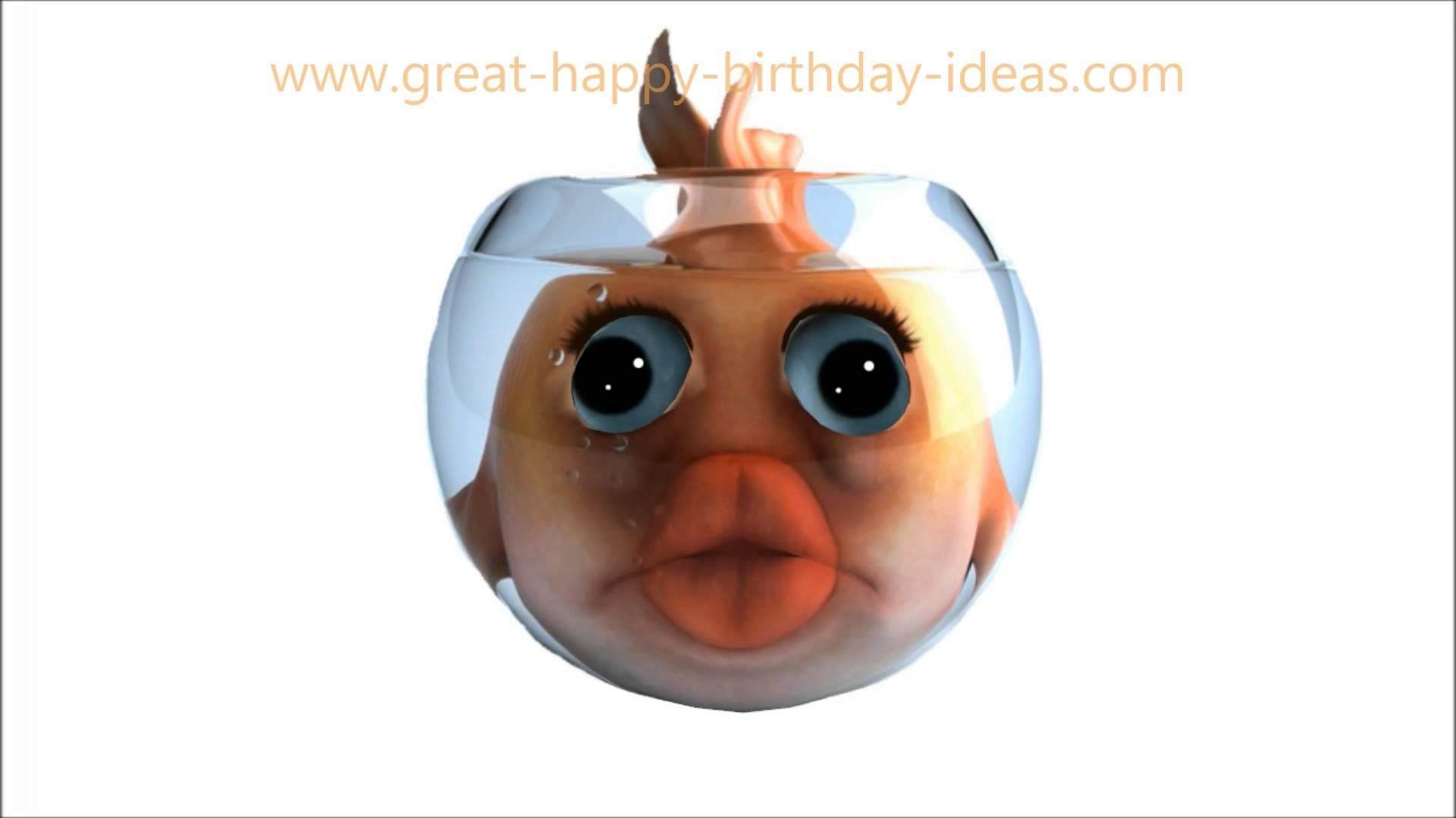 Funny Fish Singing Happy Birthday To You Happy Birthday Songs