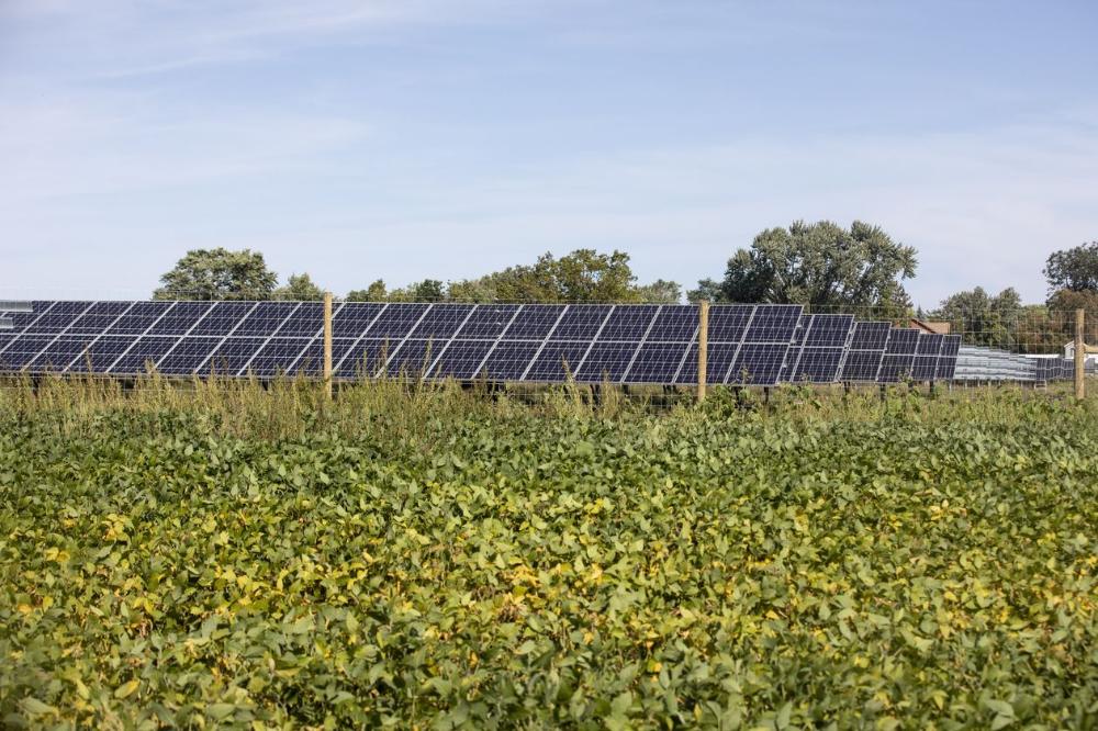 Struggling Farmers See Bright Spot In Solar Solar Solar Installation Energy Industry