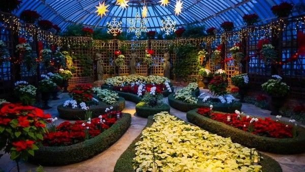 Phipps Conservatory Christmas 2019.Pin On Favorite Pittsburgh Photos
