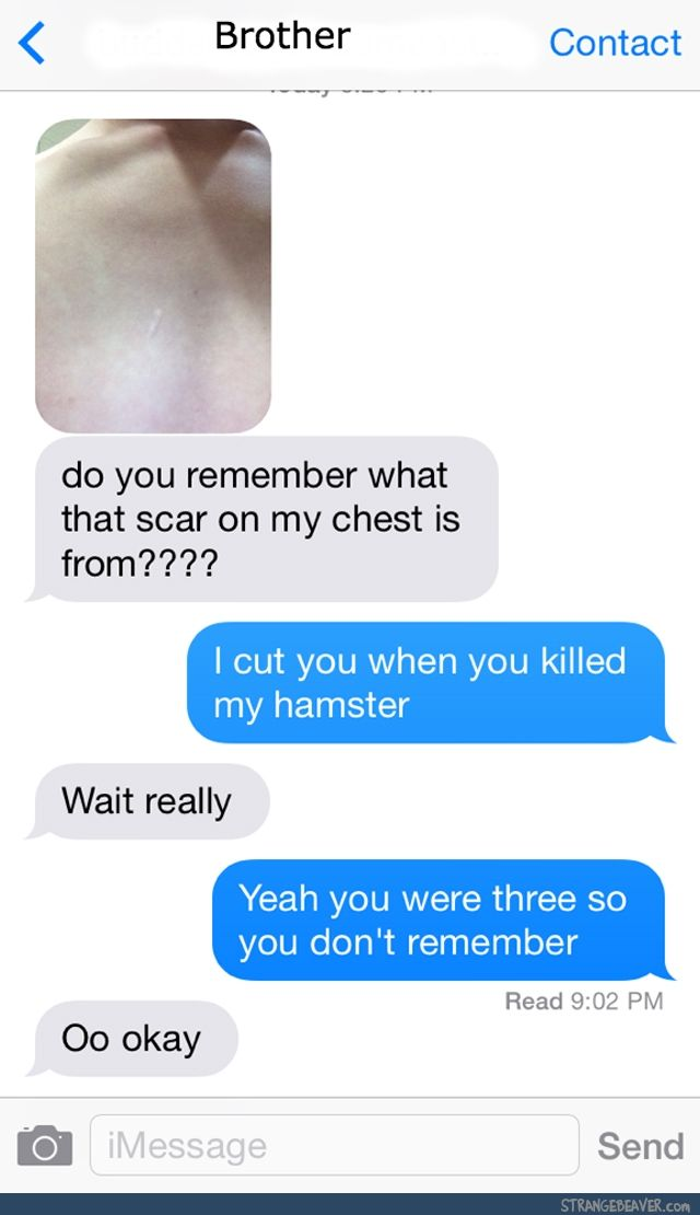Strange Text Messages 11 19 Funny Text Conversations Funny Text Fails Funny Text Messages
