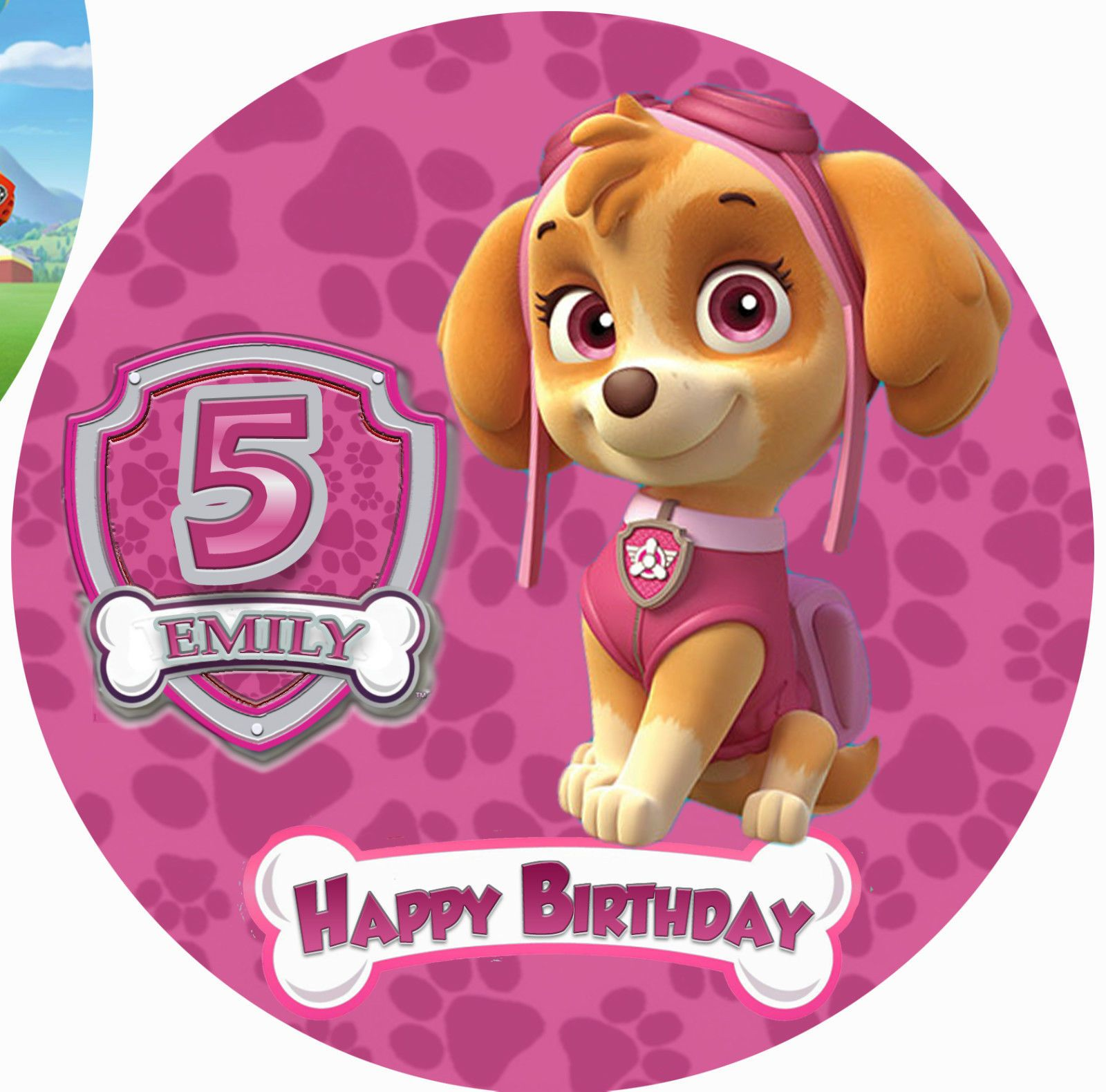 $17 5 AUD  Skye Paw Patrol Personalised Edible Image Real Icing Cake Topper Mutliple Size ebay Home & Garden - Skye paw patrol, Paw patrol, Paw patrol party, Paw, Edible images, Topper - $17 5 AUD  Skye Paw Patrol Personalised Edible Image Real Icing Cake Topper Mutliple Size ebay Home & Garden