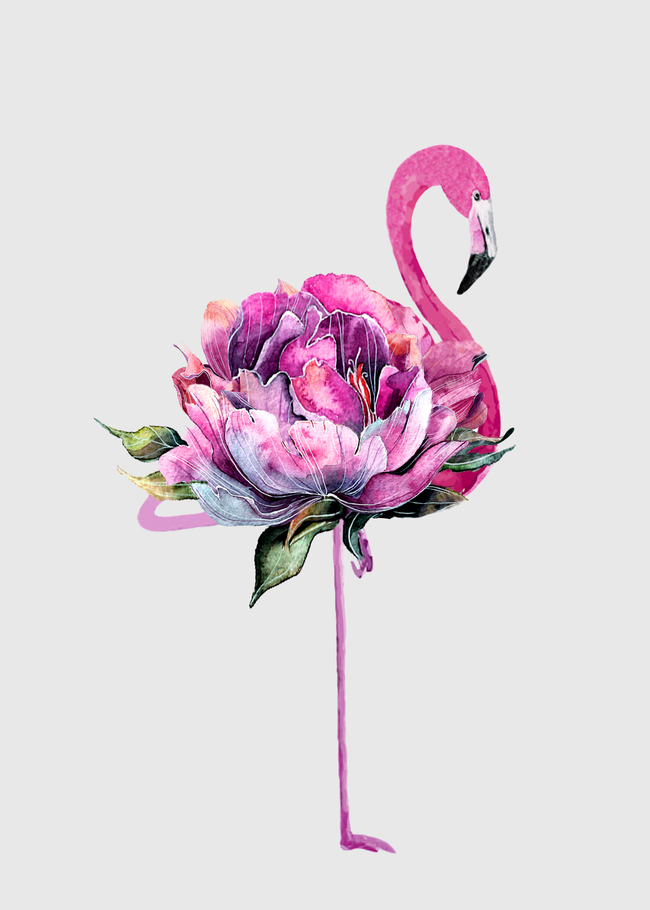 Flower Flamingo Throw Pillow By Nadja Cover 16 X 16 With Pillow Insert Indoor Pillow In 2020 Flamingo Art Print Flamingo Art Flamingo Graphic