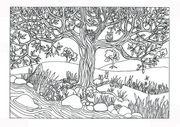 Tree River Nature Scene Coloring Page Coloring For Adults By