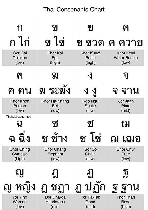 Thai Consonants Chart  Learning Thai    Chart And Learn Thai