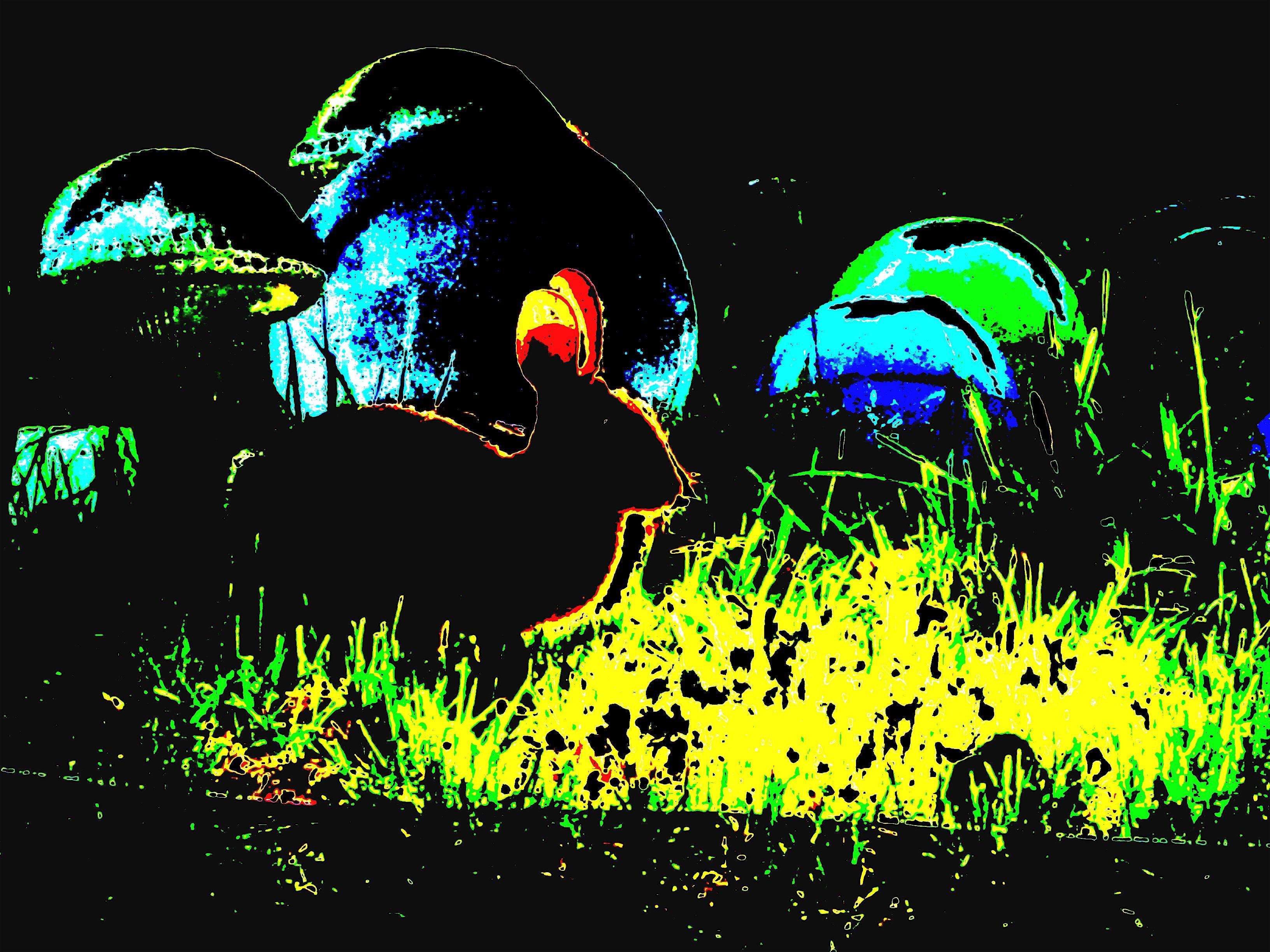 """Mushroom Bunny World""  Artography by Richard Orange"