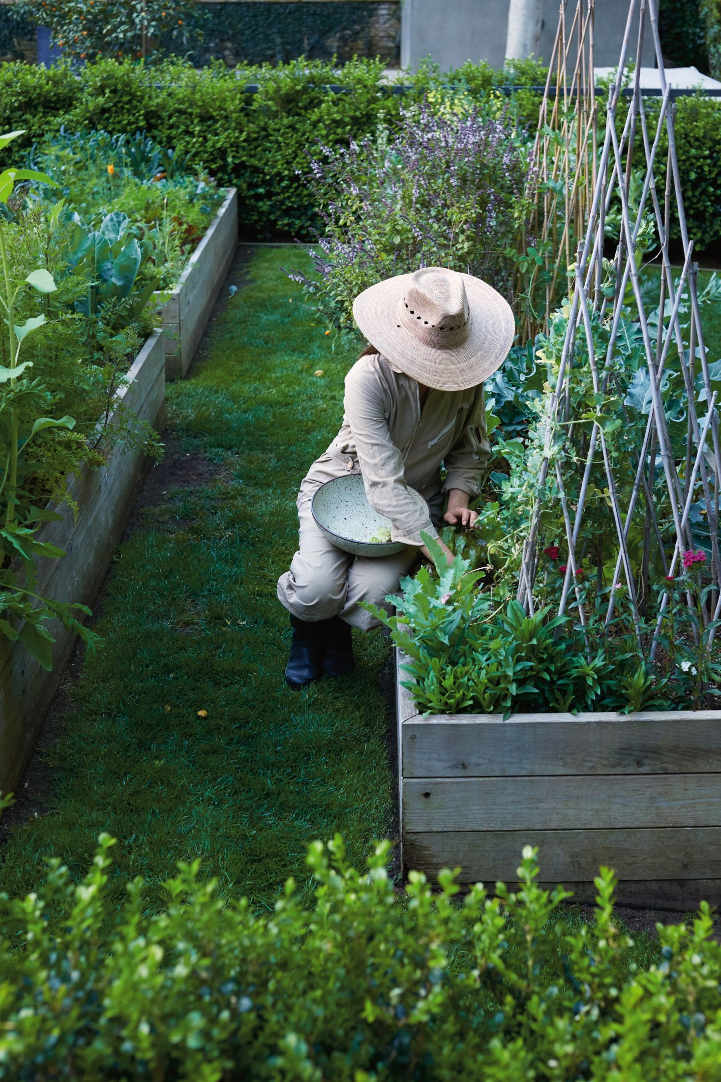 Required Reading: A Garden Can Be Anywhere #veggiegardens