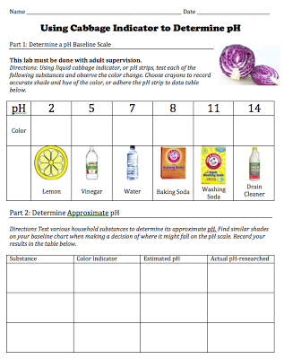 Free Download Of Student Worksheet For A Cabbage Ph Indicator Lab