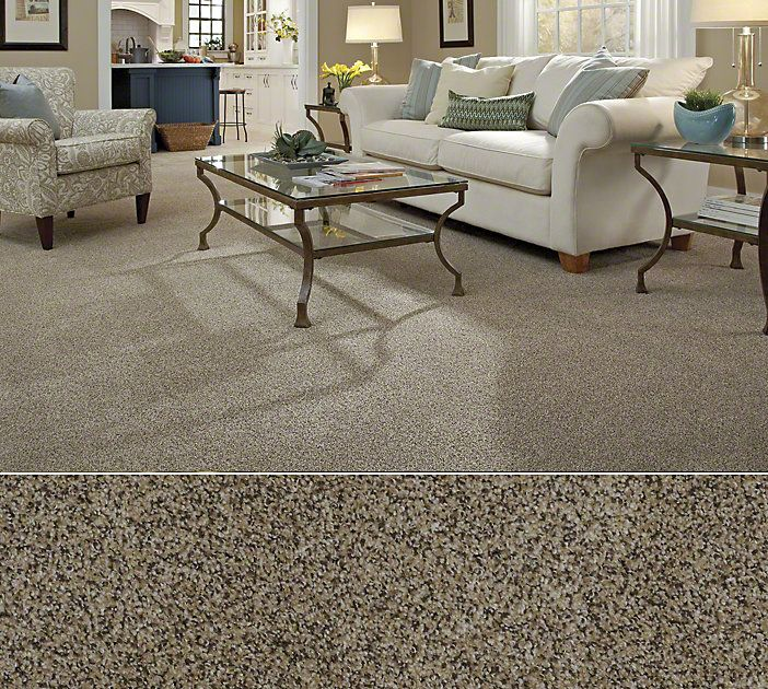 Shaw Carpeting In Stainmaster Nylon Textured Construction