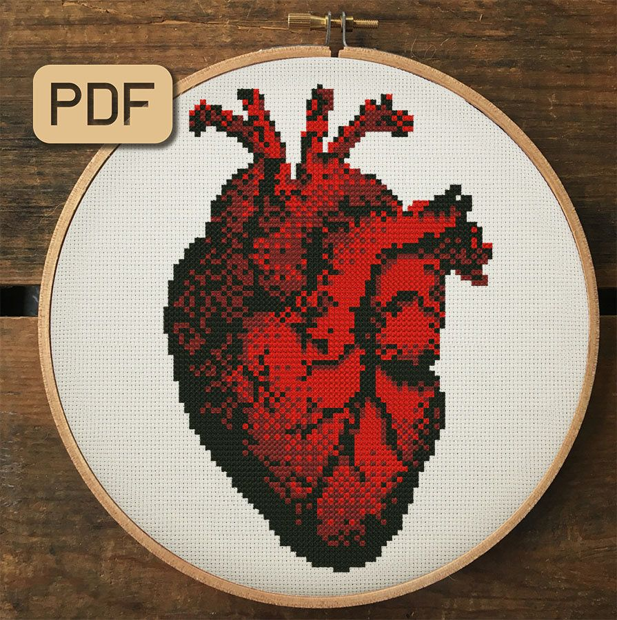 Heart cross stitch pattern Human Heart Embroidery Anatomical cross stitch Modern cross stitch Counted cross stitch Funny cross stitch chart