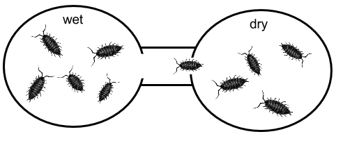 biology and behavior animal testing Behaviour - test 1 a spider building its web is an example of: humans and other animals most animals except humans 5 what is one advantage of a reflex action.