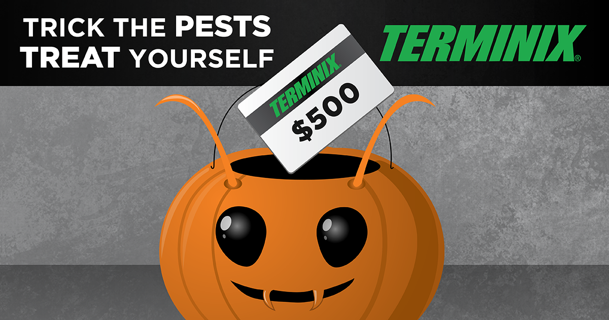 Terminix Trick and Treat Giveaway Free sweepstakes