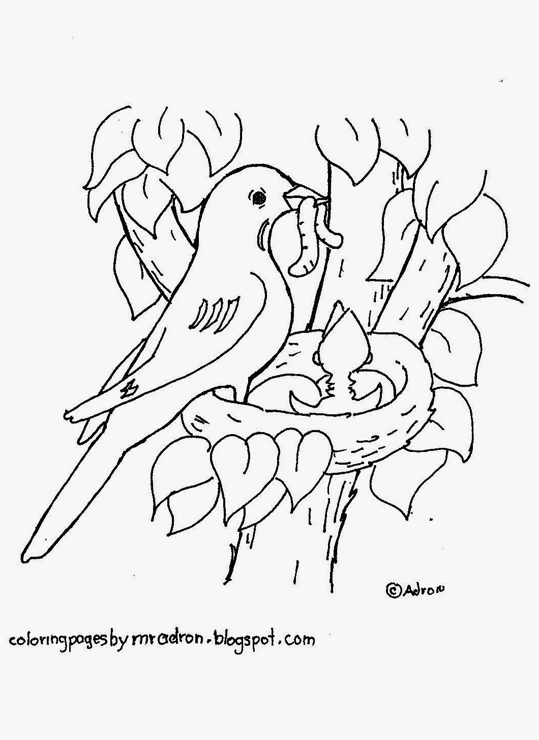 Free printable robin in nest coloring