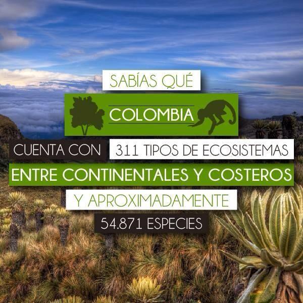 Biocomercio Colombia On Twitter Colombia Twitter