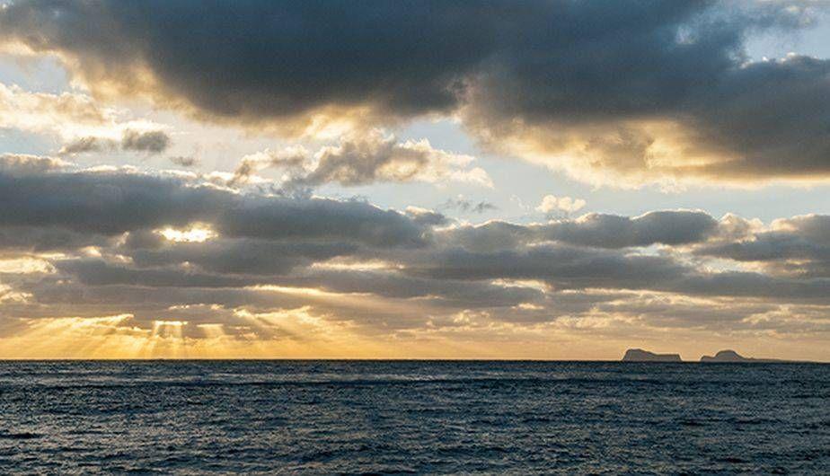 Día Mundial de los Océanos: ¿por qué es importante esta celebración?