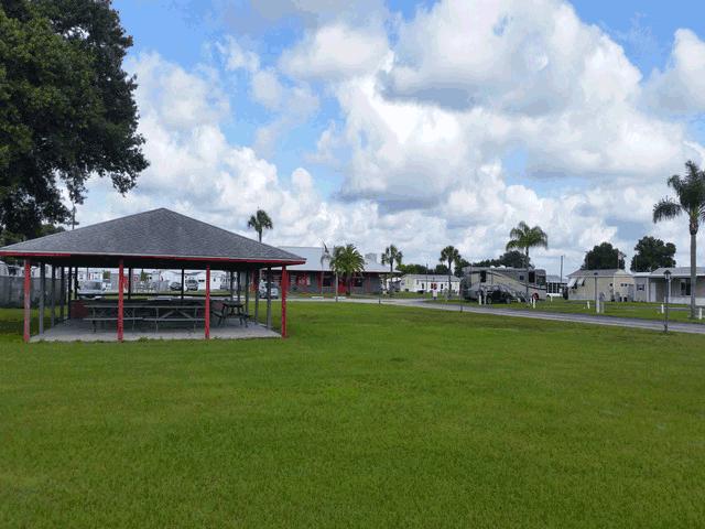 Little Willies Rv Resort At Arcadia Florida 55 Older Park Area Attractions Arcadia Rodeo Desoto Co Florida Campgrounds Rv Parks In Florida Camping Club