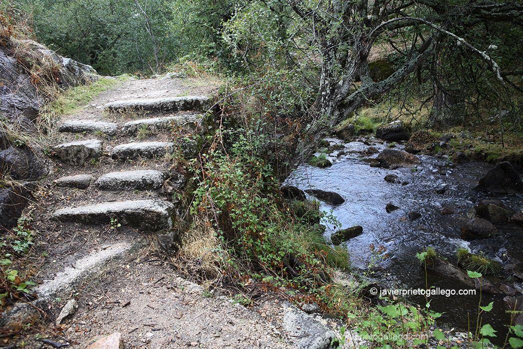El Sendero De Los Reales Sitios Segovia Siempre De Paso Rutas Senderismo España Viajar Por España Lugares De España