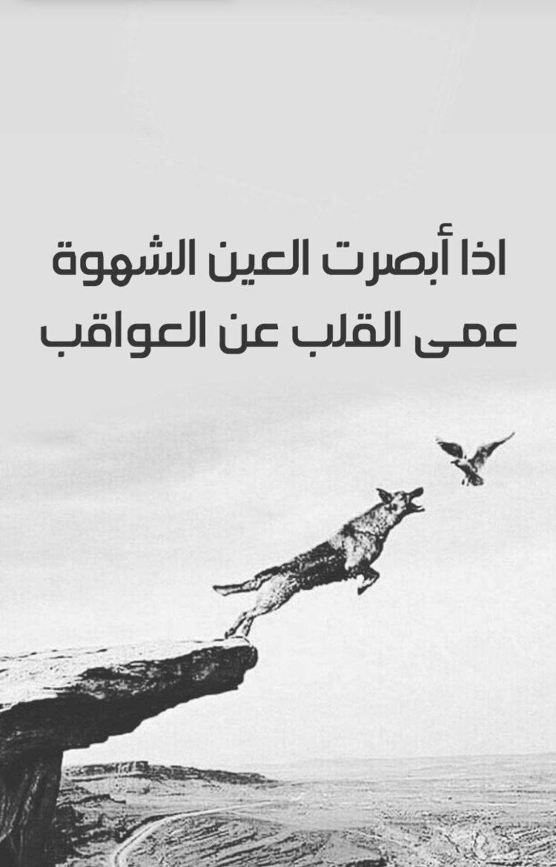 شوف شهواتك وين وصلتك Funny Arabic Quotes Arabic Quotes Proverbs Quotes