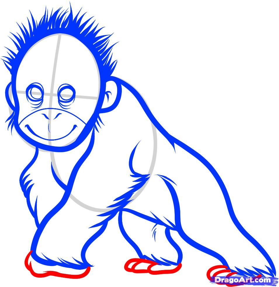 how to draw a baby orangutan, baby orangutan step 8 | Ideas ...