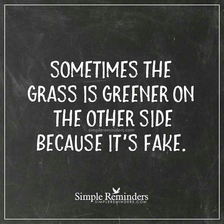 It Should Say That Sometimes It Looks Greener Looks Are Deceiving Words Quotes Life Quotes Words