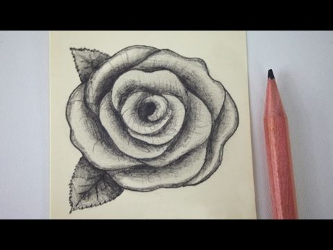 How to draw a rose easy for beginners youtube