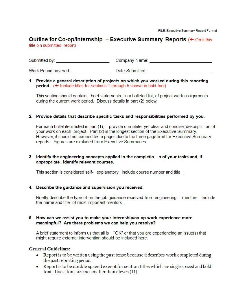 22+ Executive Summary Samples Pdf, Doc in 2020