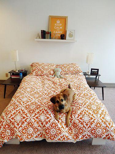 fun bedspread.