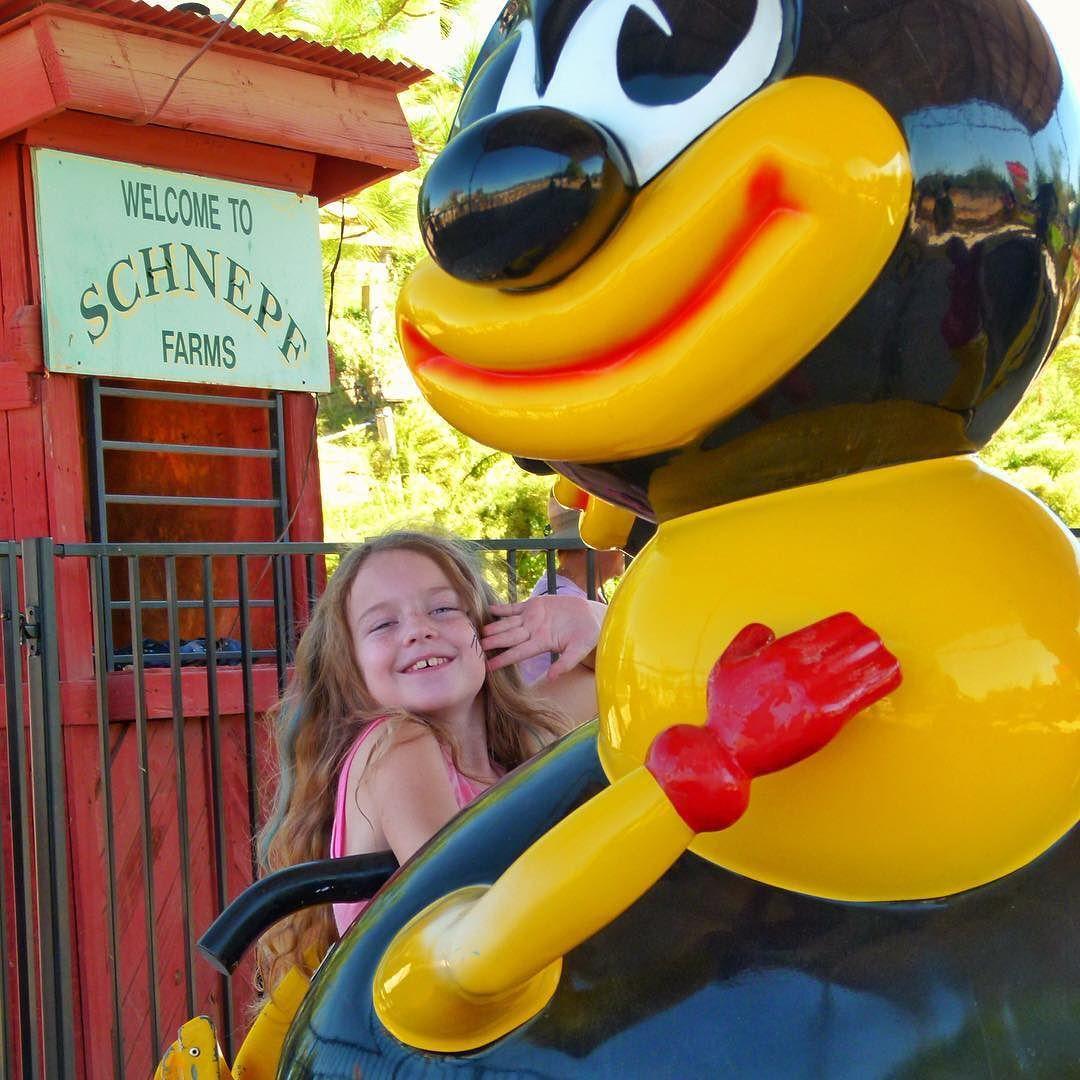 Bee Mine! schnepf_farms schnephfarms arizona