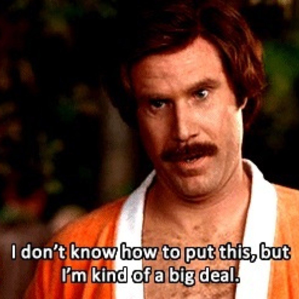 Funniest Movie Quotes: Anchorman, Funny, And Will Ferrell Afbeelding