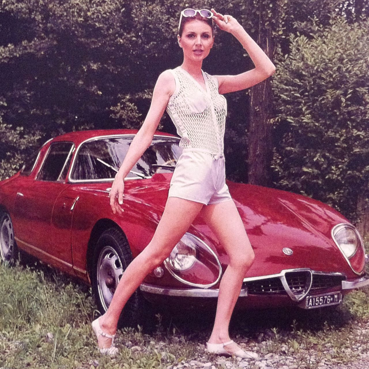 Alfa Romeo Giulia Zagato 1965 Alfa Romeo Alfa Romeo Giulia Classic Cars