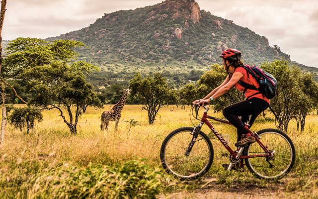Nairobi Kenya Bicycle Tour Through The Swara Wildlife Plains