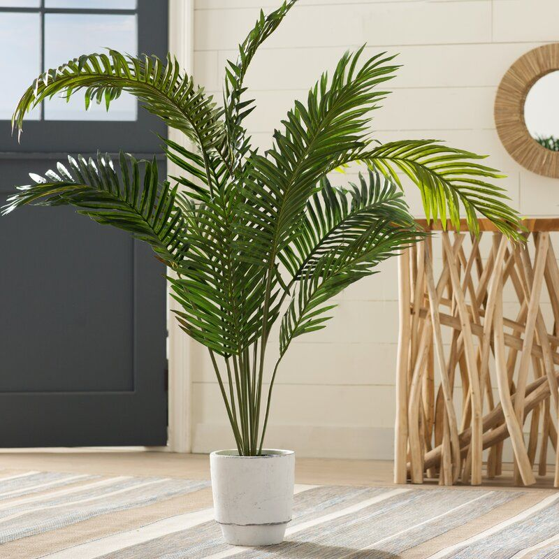 Esters Floor Palm Plant In Pot Reviews Allmodern Potted Trees Palm Plant Faux Plants