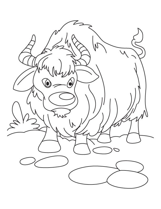Baby Yak Coloring Page Cartoon Coloring Pages Coloring Pages Earth Day Coloring Pages