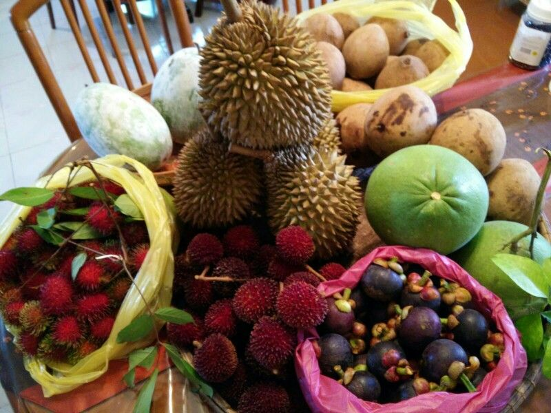 fruits and vegetables in season durian fruit