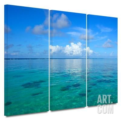 Lagoon and Reef 3 piece gallery-wrapped canvas Gallery Wrapped Canvas Set by George Zucconi at Art.com