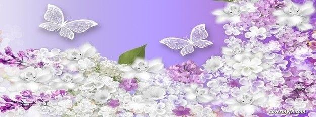 Spring lilacs butterflies facebook cover facebook for Lilac butterfly wallpaper