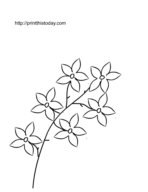 Flower page printable coloring sheets spring flowers2 for Easy spring pictures to draw